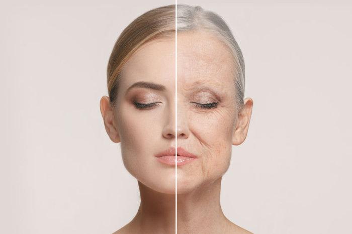 Resultado de imagem para Idade metabólica