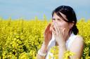 Alergia respiratória: causas, sintomas, diagnóstico, tratamento e prevenção
