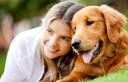 Cão: o melhor amigo da sua saúde