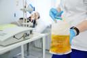 Doação de plasma convalescente da COVID-19 para tratamento das pessoas atualmente infectadas com a doença