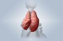 Timoma: conceito, causas, fisiopatologia, sintomas, diagnóstico, tratamento, prevenção, possíveis complicações